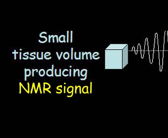 Small tissue volume producing NMR signal